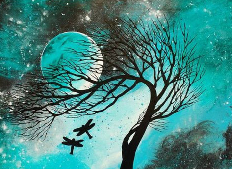 Night of Wonders