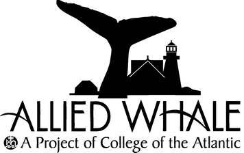 Allied Whale Logo Transparent.png