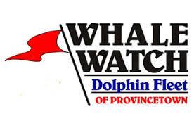 whale p town.jpg
