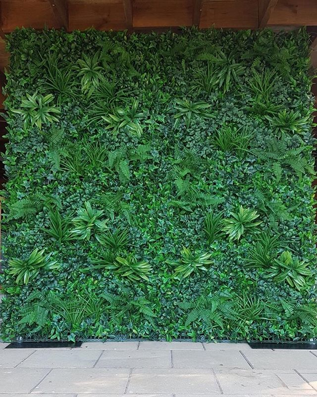 Introducing our new green foliage wall.  This is available in one size at the moment