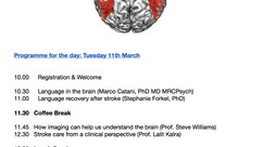 Stroke Research Day: Language Recovery After Stroke