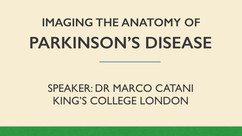 Imaging the Anatomy of Parkinson's Disease