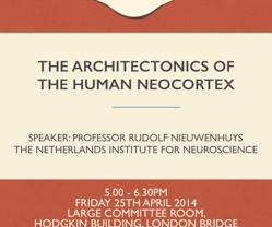The Architectonics of the Human Neocortex