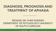 Diagnosis, prognosis and treatment of aphasia