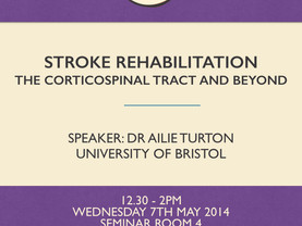 Stroke Rehabilitation - the Corticospinal Tract and Beyond