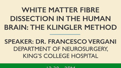 White matter fibre dissection in the human brain: the Klingler method