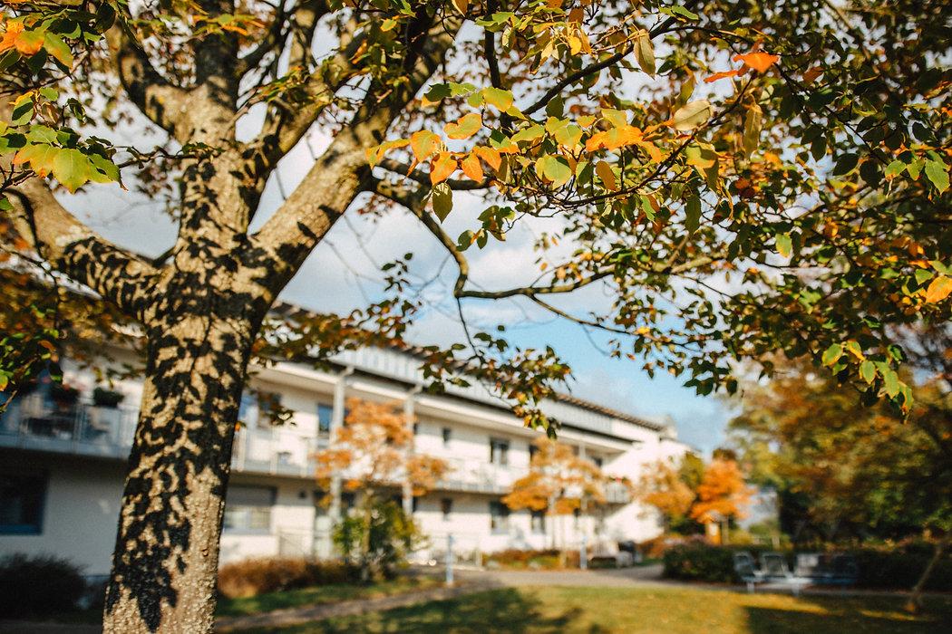 2020-10-14_Rohesche Stiftung-2259.jpg