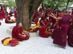 tibet-891298_1920