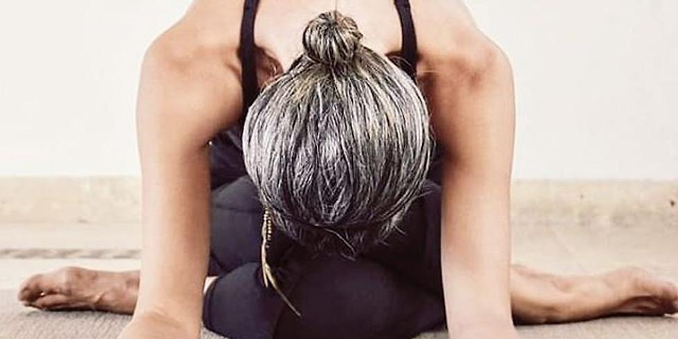 Yin Yoga Masterclass - Los Cabos MEXICO