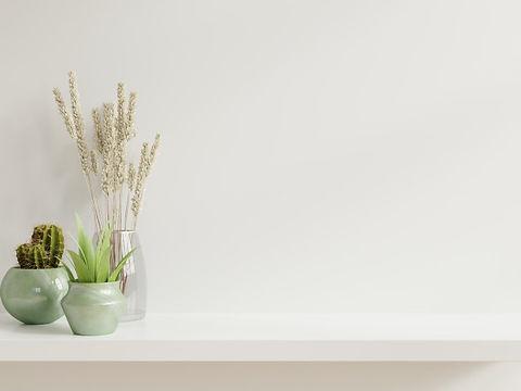 mur-maquette-plantes_41470-1743.jpg