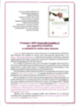 2019 Locandina Laudato si_page-0001.jpg