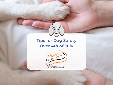 Dogs & Fireworks & Safety