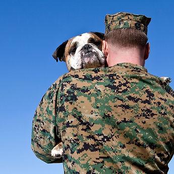moving my pet during deployment.jpg