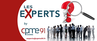 les experts logo.png