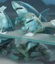 school of sharks.jpg