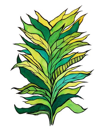 Green leaves,  paper, ink, ecoline, watercolour