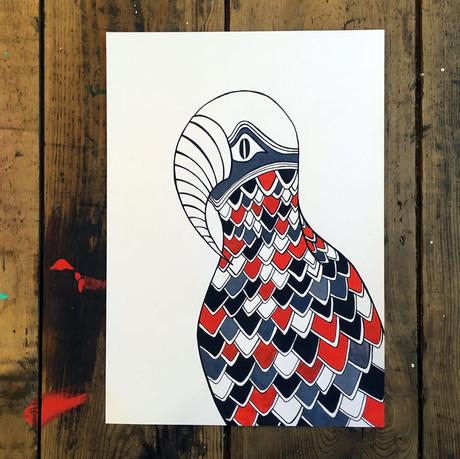 Parrot   paper, pen & watercolours