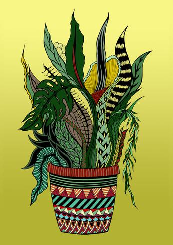 Pot full of plants,  pen & paper, digitally coloured