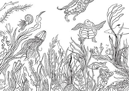 onderwater-wereld-kleurplaat.png