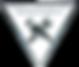 tnp logo (2)_burned.png