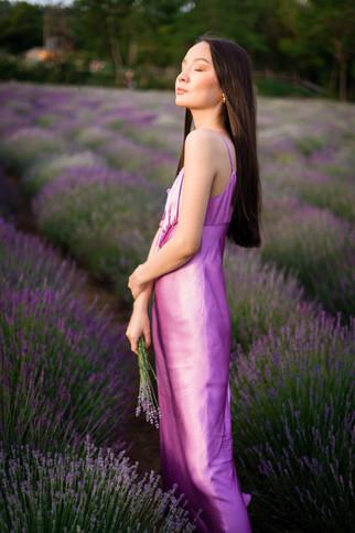 lavender-photoshoot-4.jpg