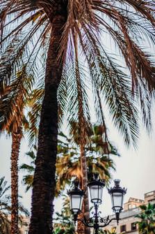 barcelona-photographer-35.jpg