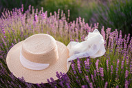 lavender-photoshoot-11.jpg