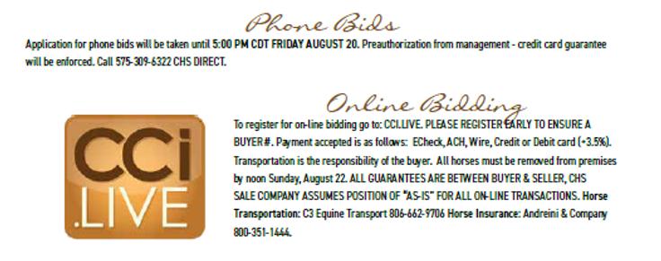Phone online bidding.PNG