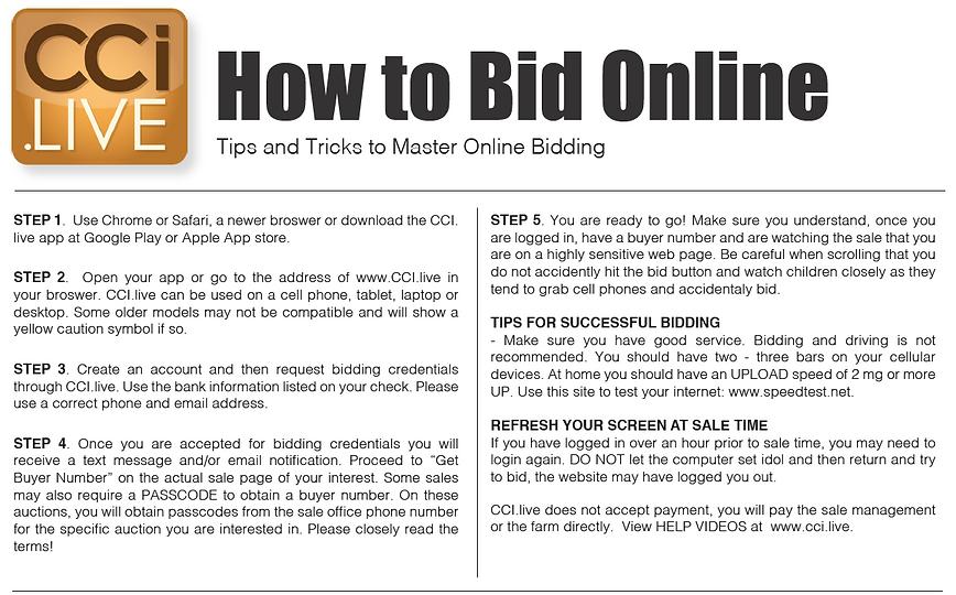 Bid online tips.PNG