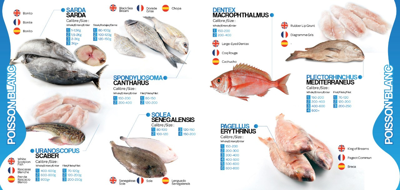 page2brochure lavictoirefish
