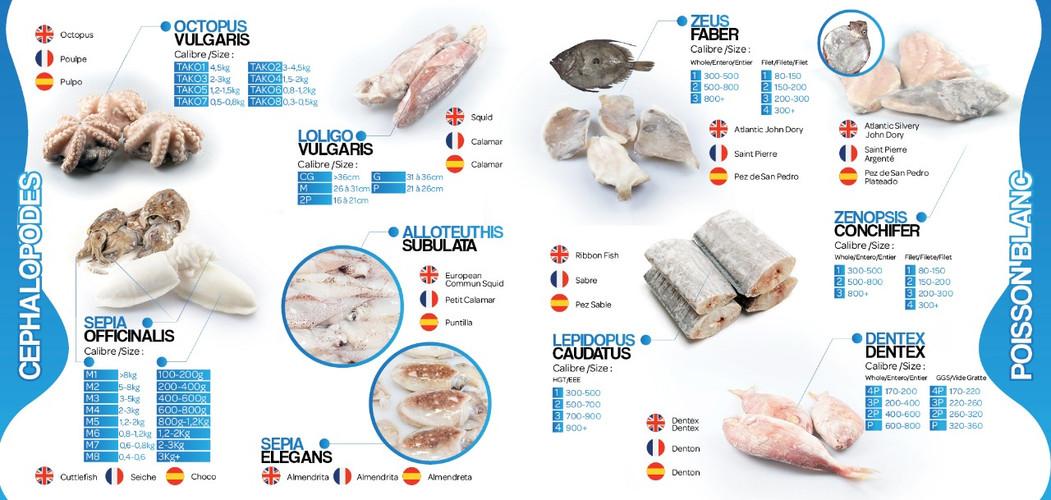 page1brochure lavictoirefish