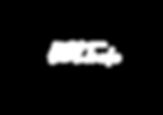 Bolt Logo White.png