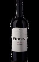 Bodini Malbec