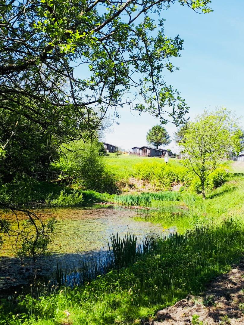 Lake @ Moreton