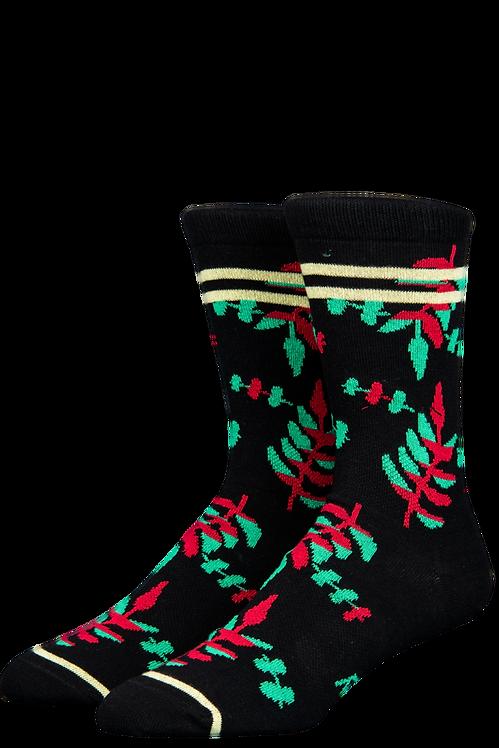 Stinky Socks-LAU