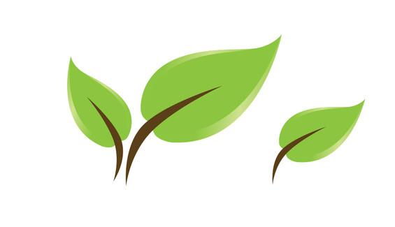 Grow Penistone-leaves-.jpg