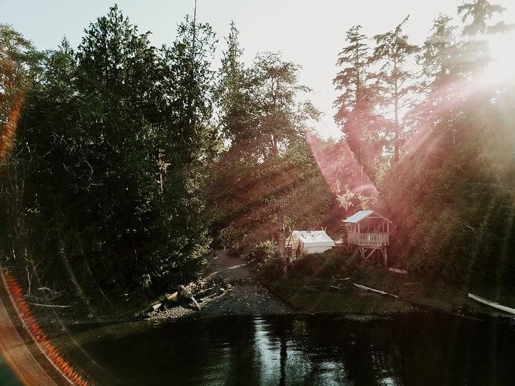 forestbath.jpg