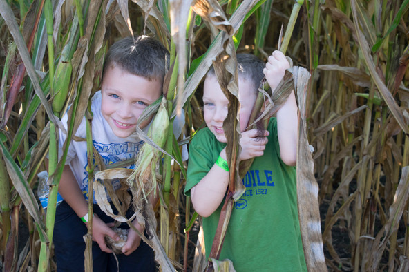 Our Day at Great Country Farms