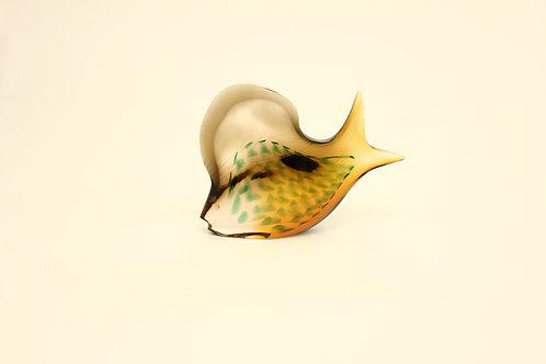 Glass fish/Ryba sklo
