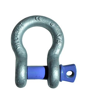 Bison Bow Screw Pin Shackle.jpg