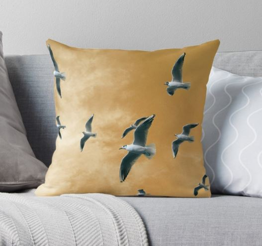 seagulls-throwpillow-£15