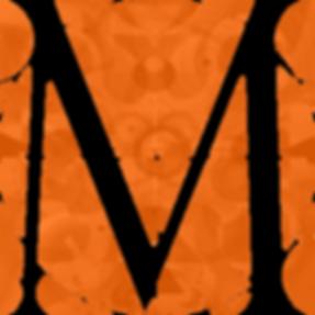 logo1-big transparent.png