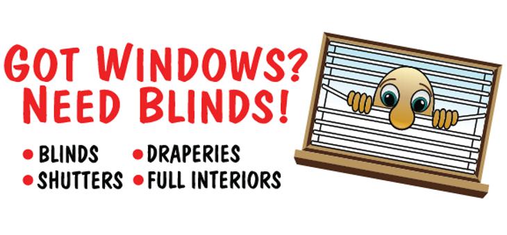 Got Windows Need Blinds