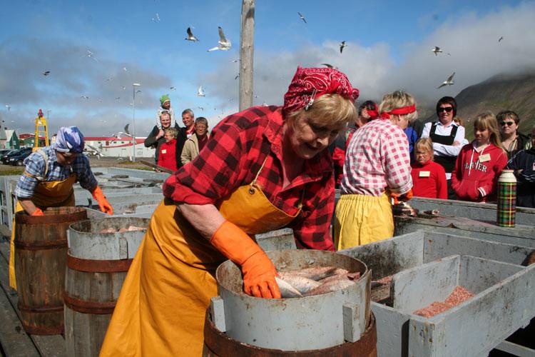 Síldarminjasafn Íslands, Siglufjörður, safn, úr vör, vefrit