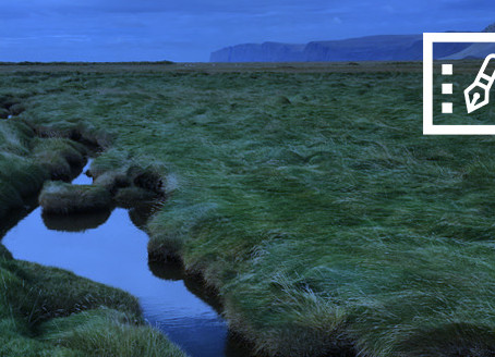 Glaumur nútímans á gnægtarborði jarðar