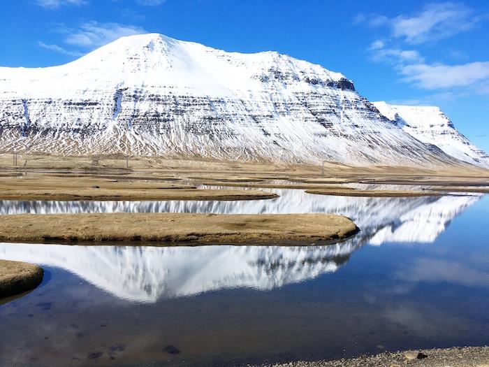 Kýrin Sæunn, sjósund, Flateyri, Önundarfjörður, Vestfirðir, Bryndís Sigurðardóttir, Aron Ingi Guðmundsson, úr vör, vefrit