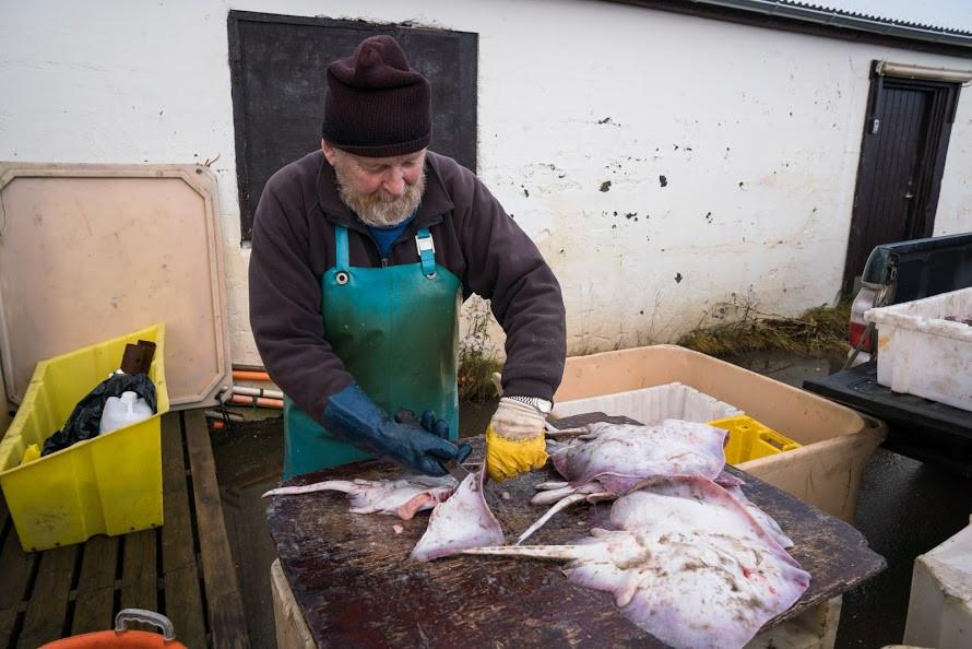 Þingeyri, Vestfirðir, Haukur Sigurðsson, fiskverkun, landsbyggðin, skóli, hafið, loftslagsmál, sameinuðu þjóðirnar, Future Food institute, nýsköpun, úr vör, vefrit