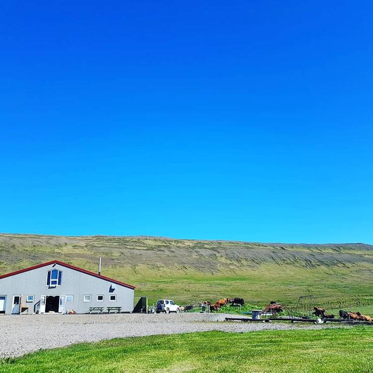 Rjómabúið á Erpsstöðum, Erpsstaðir, Búðardalur, úr vör, vefrit