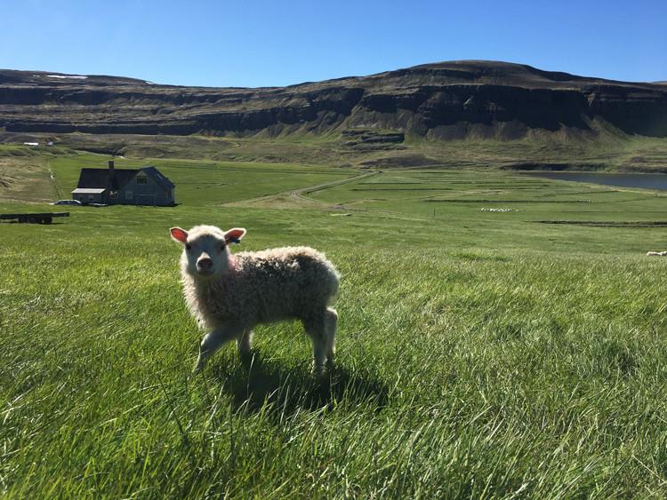 Gilsfjordurarts, Brekka, Gilsfjörður, gestavinnustofa, úr vör, vefrit