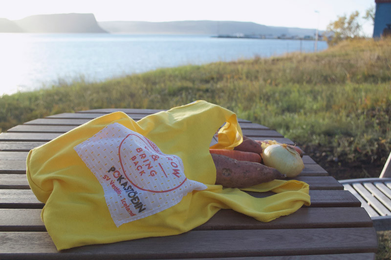 Boomerang Bags, umhverfismál, Guðrún Anna Finnbogadóttir, náttúra, Julie Gasiglia, úr vör, vefrit